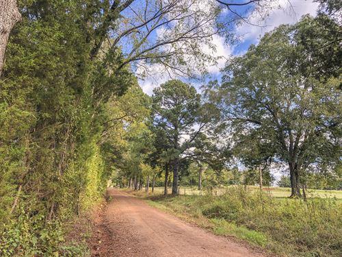 29 Acres Cr 1412 : Jacksonville : Cherokee County : Texas