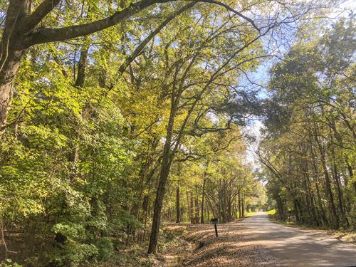 53 Acres Caveness Rd/Cr 1411 : Jacksonville : Cherokee County : Texas