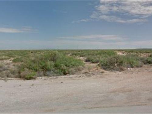 El Paso, Tx .226 Acres $18K Neg : El Paso : Texas