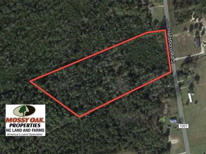 Under Contract, 10 Acres of Hunti : Whiteville : Columbus County : North Carolina
