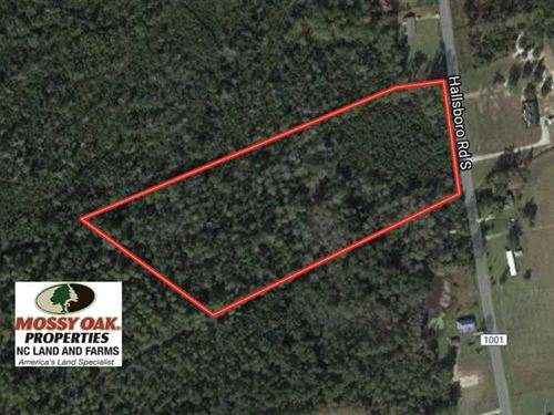 10 Acres of Hunting And Timber Lan : Whiteville : Columbus County : North Carolina