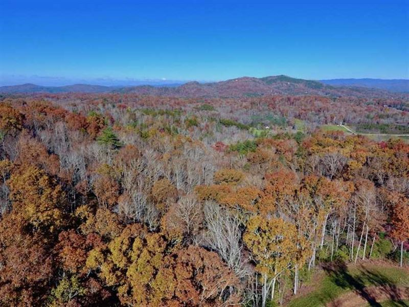 20.18 Acres of Hunting And Timber : Murphy : Cherokee County : North Carolina