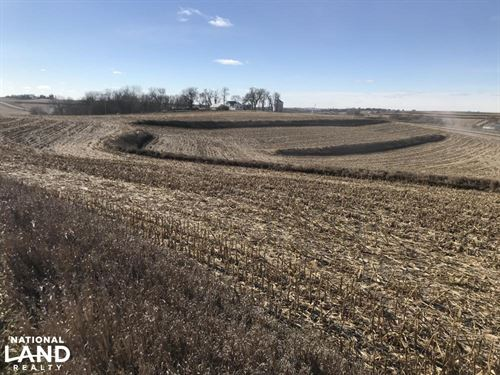 North Earling 50 Acres of Farm Land : Earling : Shelby County : Iowa