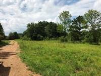 Land, Kristy Ln, Starkville, MS : Starkville : Oktibbeha County : Mississippi