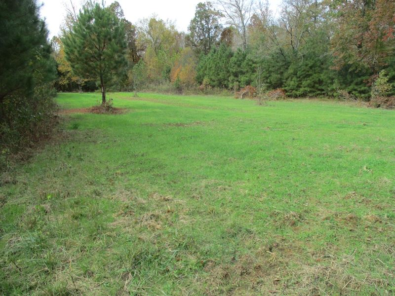 36 Acre Hunting Property Southern : Ramer : McNairy County : Tennessee