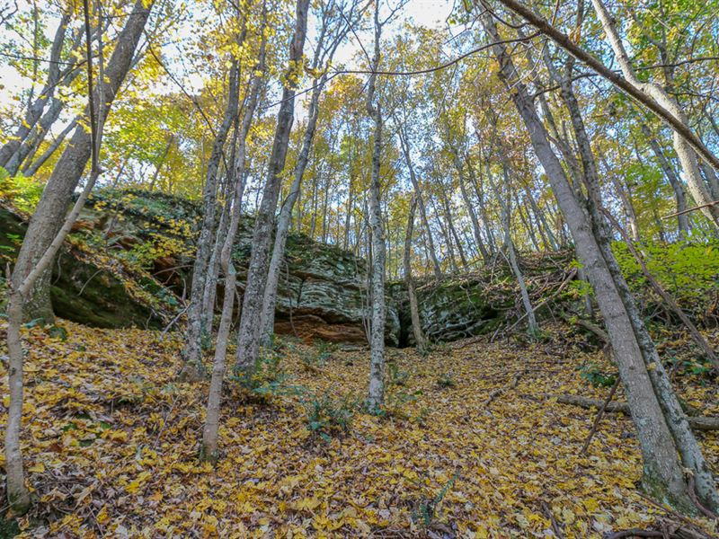 Sr 35, 113 Acres : Ray : Jackson County : Ohio