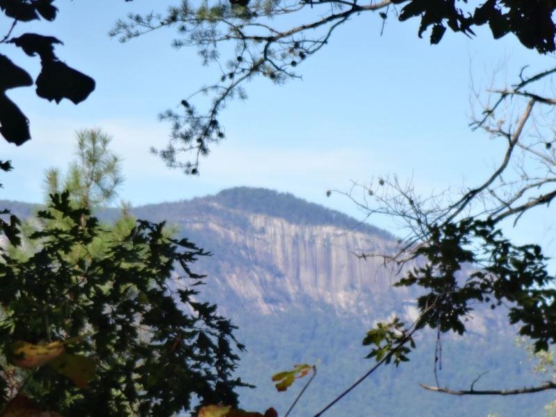 38.10 Acres, Great Mountain Vi : Pickens : Pickens County : South Carolina