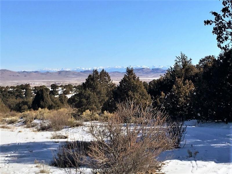 Pinon Hills Ranch Lot 4 : South Fork : Rio Grande County : Colorado