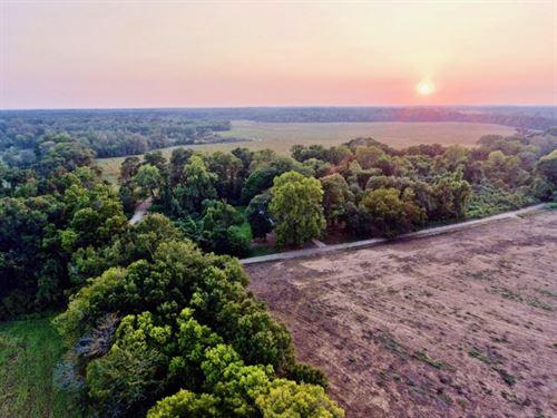 172 Acre Tillable / Timber : Natchez : Natchitoches Parish : Louisiana