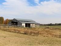 Cattle Ranch Beautiful Views : Pocahontas : Randolph County : Arkansas