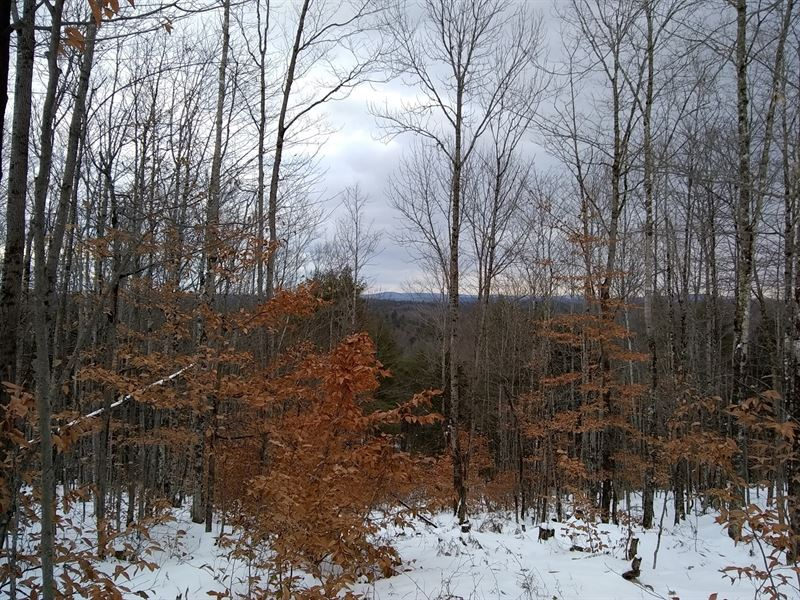 Home Lot For Sale in Hampden, Maine : Hampden : Penobscot County : Maine