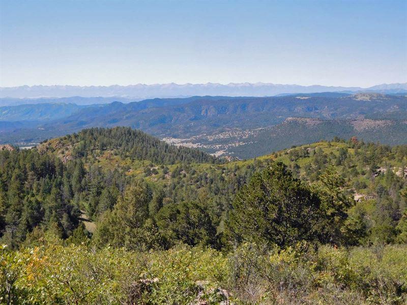 20 Acre Getaway Borders Government : Cripple Creek : Teller County : Colorado