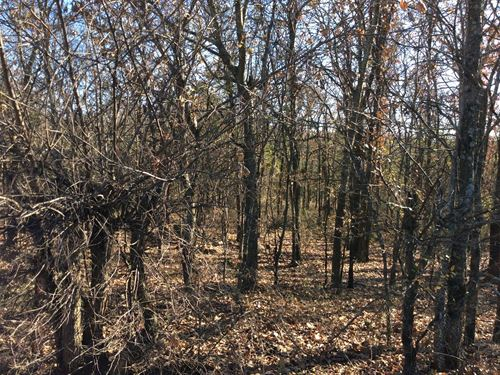 25 Acres Wooded Land : Locust Grove : Mayes County : Oklahoma