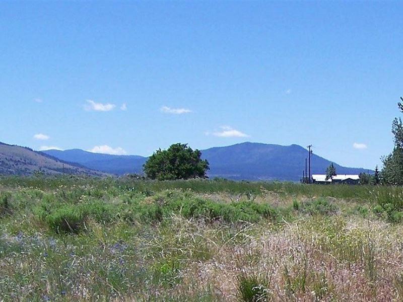 Awesome 1.33 Ac, New Pine Creek : New Pine Creek : Modoc County : California