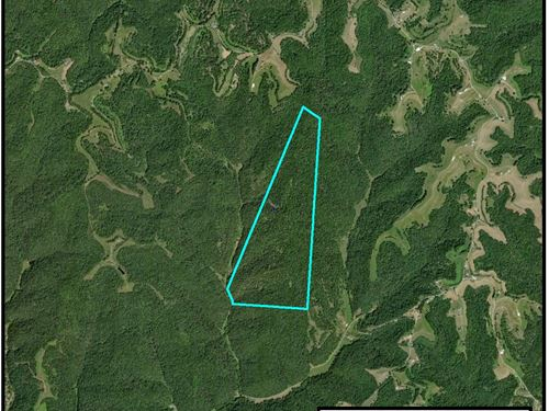 193 Acre Parcel : Leon : Putnam County : West Virginia