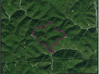 315 Acre Parcel : Branchland : Lincoln County : West Virginia