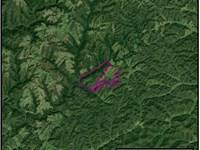 483 Acre Parcel : Morehead : Elliott County : Kentucky