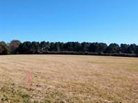 5 Acres Beautiful Pasture Land : Milner : Lamar County : Georgia