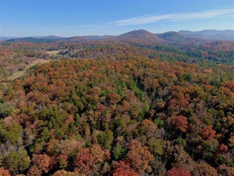 107.44 Acres of Investment And Dev : Murphy : Cherokee County : North Carolina
