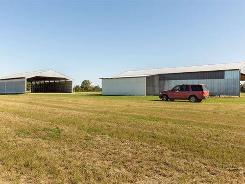 43 Acre Producing Hay Field Coastal : Live Oak : Suwannee County : Florida