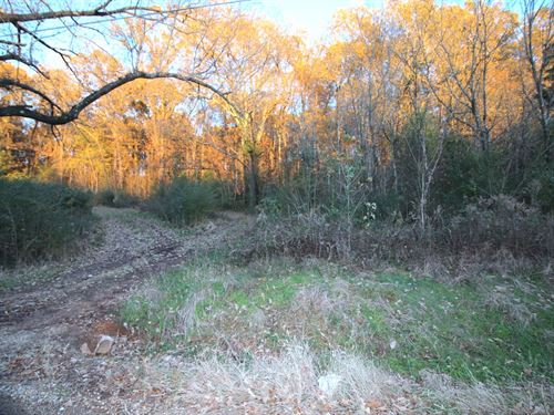Lot For Sale in Thayer, MO : Thayer : Oregon County : Missouri