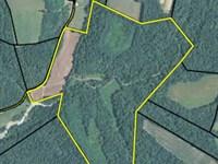 Farm Rural Ky, Road Frontage : Liberty : Casey County : Kentucky