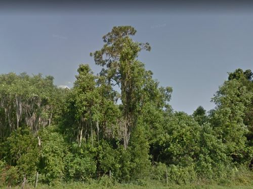 Polk County, Fl $25,000 Each : Fort Meade : Polk County : Florida