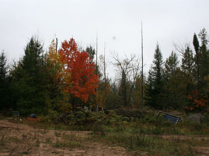 Hunting/Investment Property : Sugar Camp : Oneida County : Wisconsin