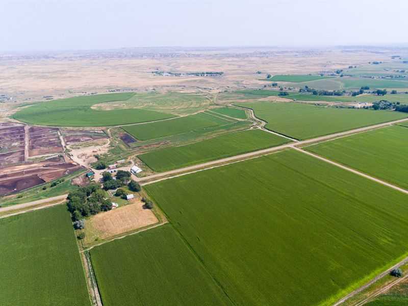 Kinsey Irrigated F&F North Unit : Kinsey : Custer County : Montana