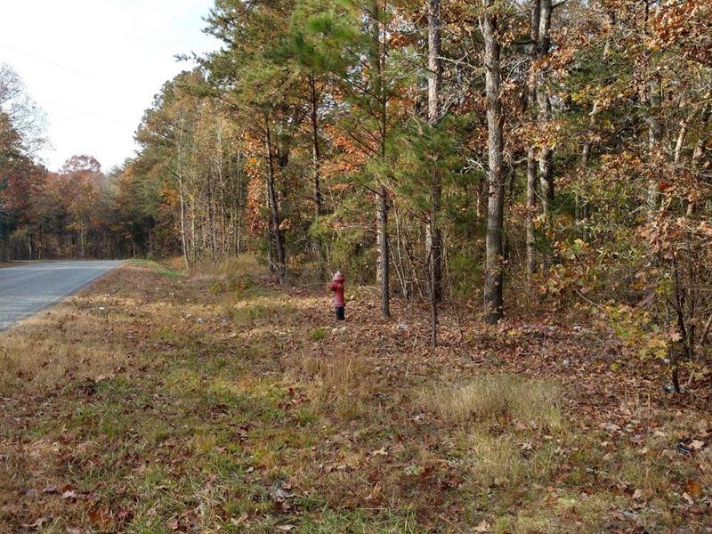275 George Brooks Dr./Development : Siler City : Chatham County : North Carolina