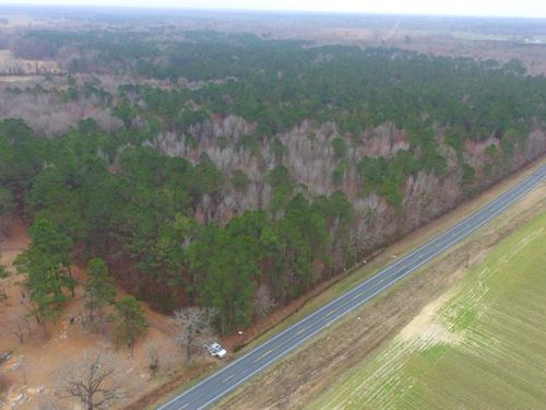 Brown Marsh Hunting Land : Clarkton : Bladen County : North Carolina