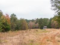 Countryside Homestead Retreat : Nacogdoches : Nacogdoches County : Texas