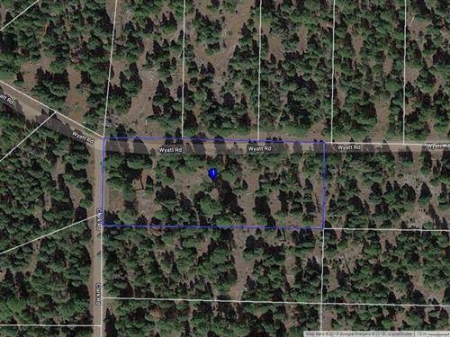 Corner Lot Modoc County, Northern : Alturas : Modoc County : California