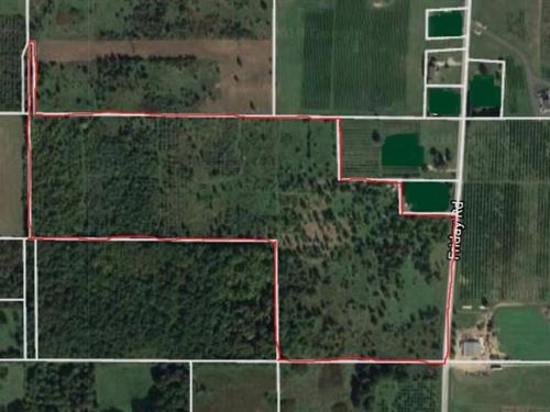 Beautiful Piece Property 39 Acres : Coloma : Berrien County : Michigan