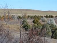 Reichert Pivot Irrig, Home & Crp : Kimball : Kimball County : Nebraska