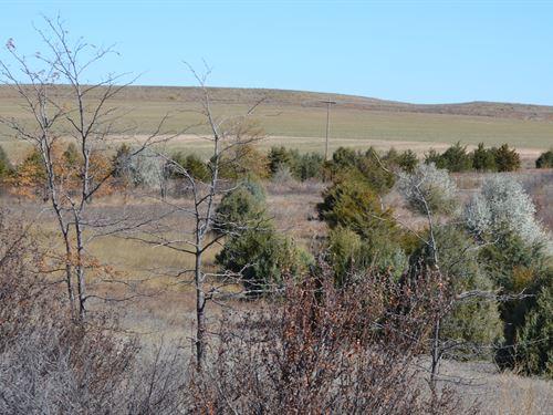 Reichert Pivot Irrig, Home & Crp : Kimball : Nebraska