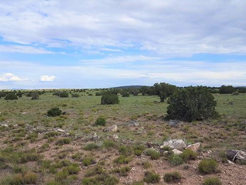 Gorgeous 36.5 Ac St, Johns Az : Saint Johns : Apache County : Arizona
