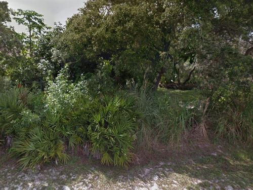 Sarasota Co, .50 Acres, 34,999 : Venice : Sarasota County : Florida