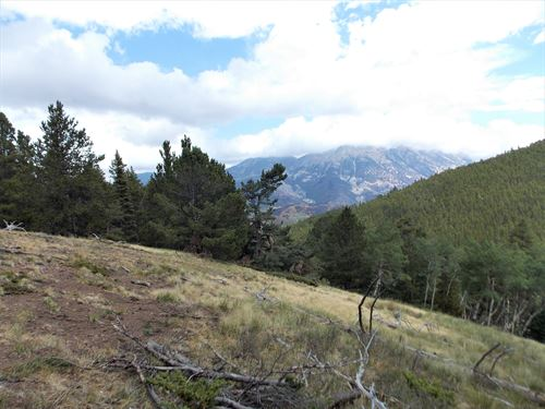 Forbes Wagon Creek Ranch, Lot 488 : Fort Garland : Costilla County : Colorado