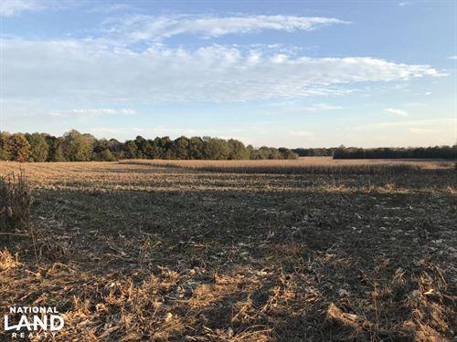 Greenville Development Land : Simpsonville : Greenville County : South Carolina