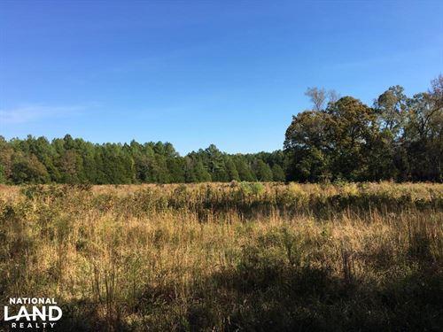 Reids Creek Woodlands And Fields : Abbeville : South Carolina