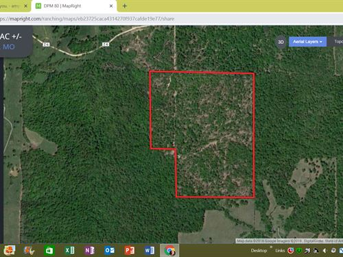 Tired Crowds in Your Hunting Spot : Gatewood : Ripley County : Missouri