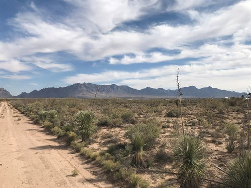 Land For Sale in Deming NM : Deming : Luna County : New Mexico