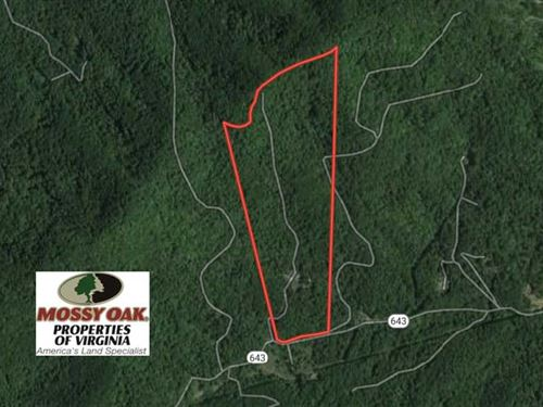 Reduced, 53 Acres of Residential : Monroe : Amherst County : Virginia