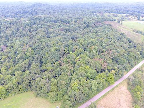 Mill St, 12 Acres : Lewisville : Monroe County : Ohio