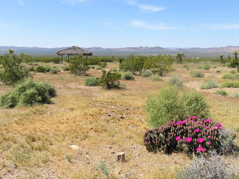White Hills, Power, Water, Gazebo : White Hills : Mohave County : Arizona