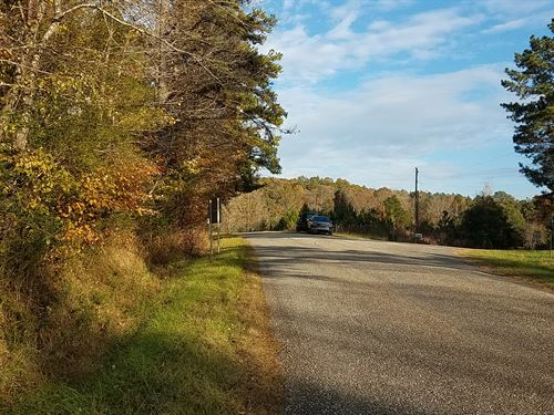 35+/- Acres Timberland : Heflin : Cleburne County : Alabama