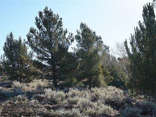 Slate Creek Lot 1 : Lander : Fremont County : Wyoming