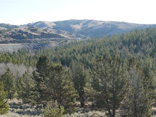 Slate Creek Lot 5 : Lander : Fremont County : Wyoming