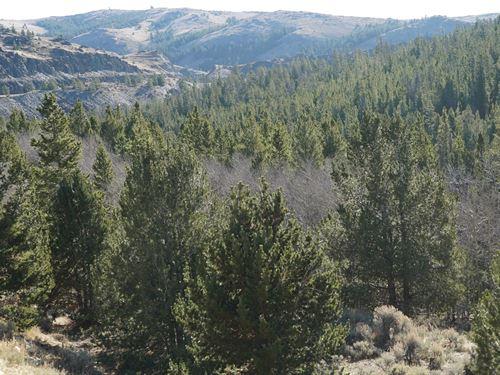 Slate Creek Lot 6 : Lander : Fremont County : Wyoming